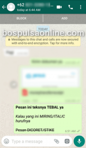 WhatsApp Kustomisasi Teks