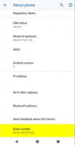 Google Pixel 3 About Phone Build Number